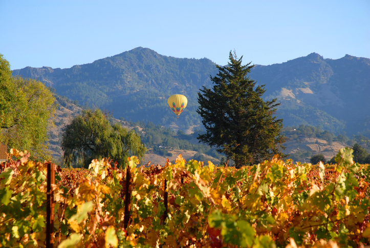 A hot air balloon peacefully soars over a vineyard in Napa Valley, California.